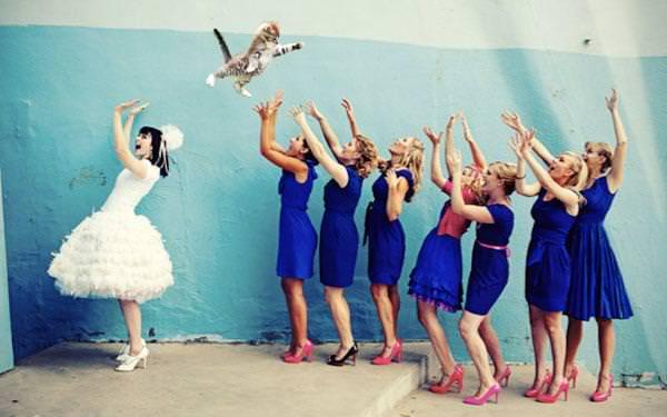 BridesThrowingCats 165aaf65 image