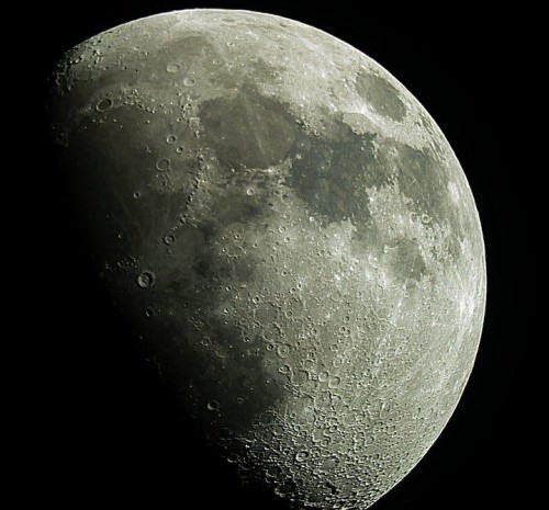 Look up to the moon image
