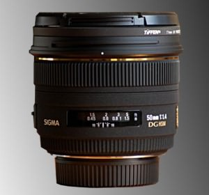 Prime Lenses article image
