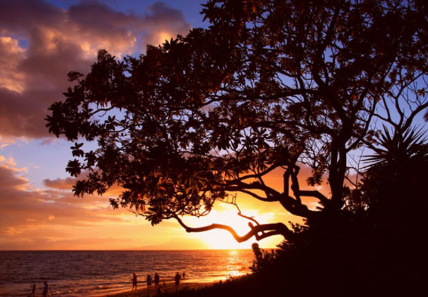 sunset jpg image