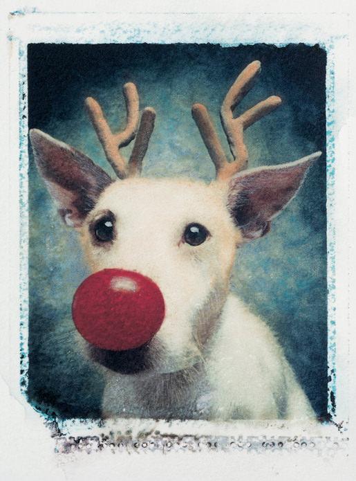 Rudolph 1990 image