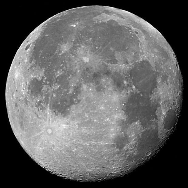 7480964 M image
