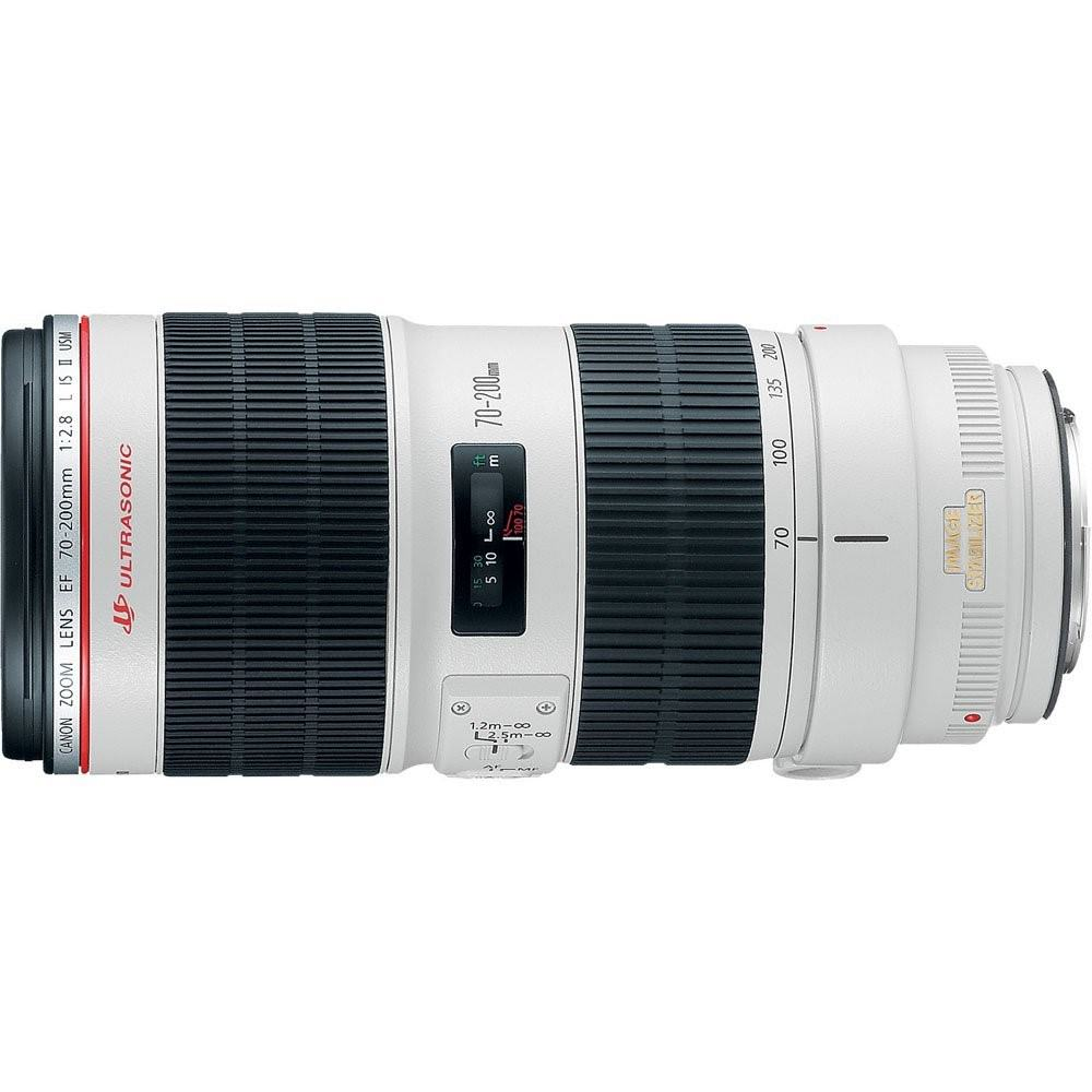 Tamron vs. Canon 70 200mm 1 image