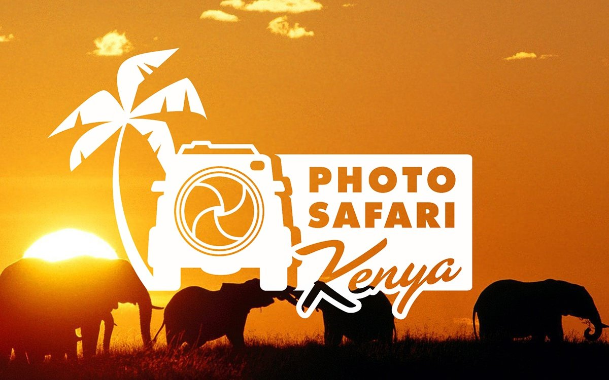 Copyright Photo Safari Workshops image