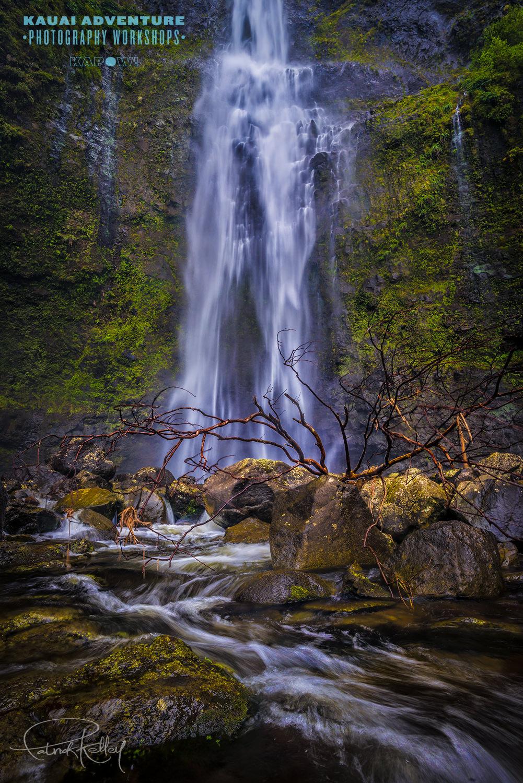 kauai2 003 image