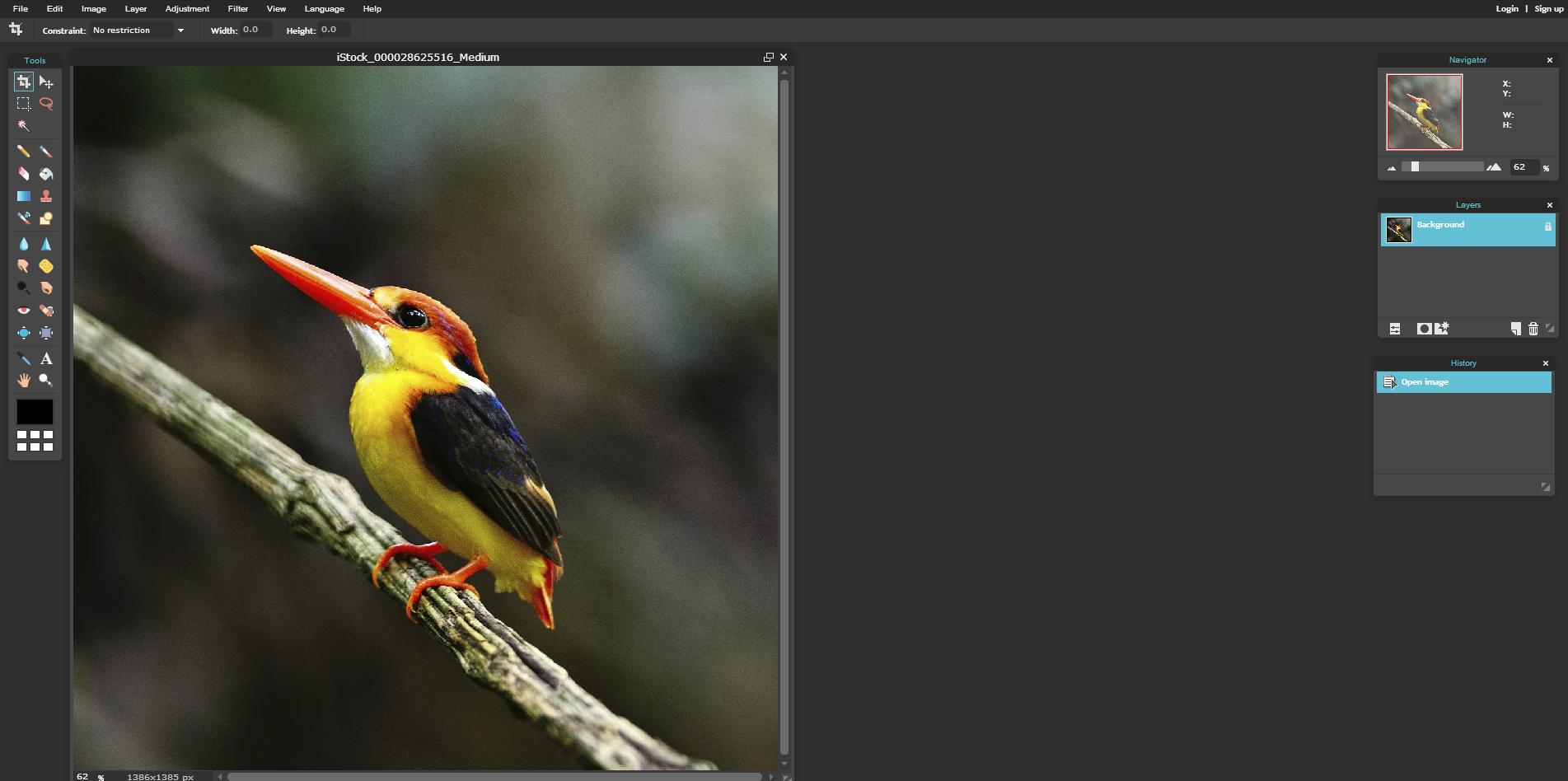 Online Photo Editor Pixlr Editor Autodesk Pixlr compressor image