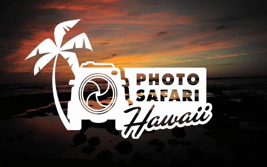 Photo Safari image