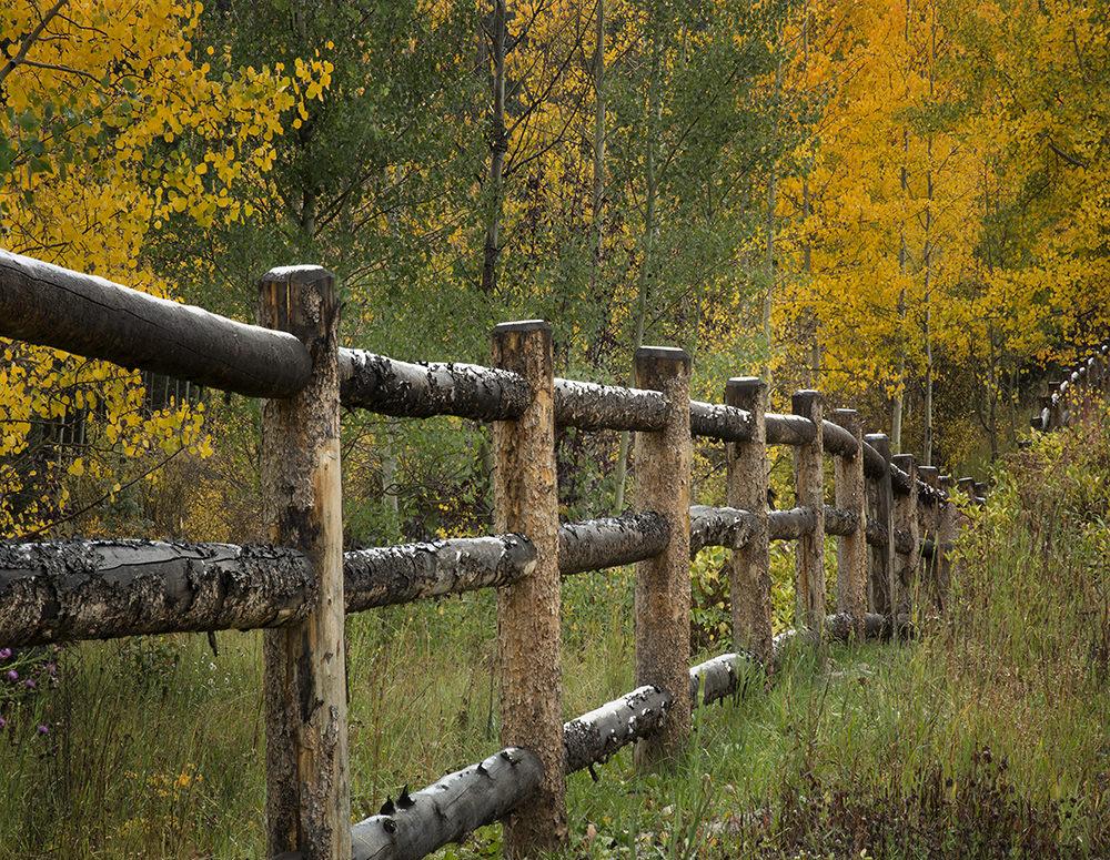 co fence1 1000 image
