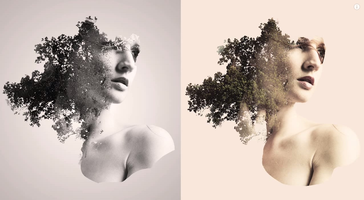 How to Create a Double Exposure Effect in Photoshop image