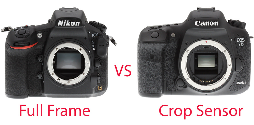 full frame vs crop sensor image