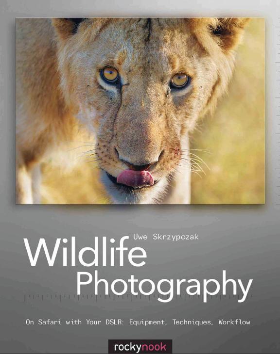 Wildlife Photography image