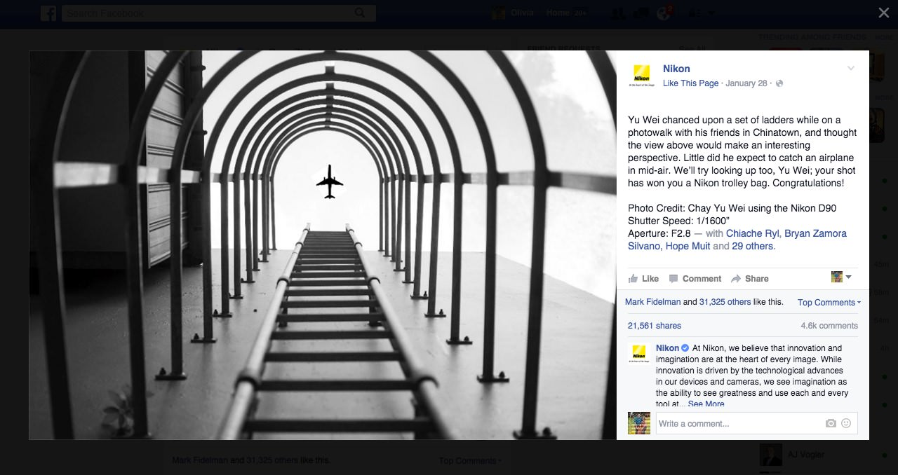 Nikon Gives Photography Award image