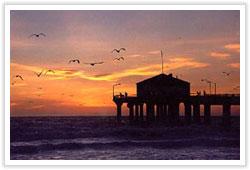 beachs0803 image
