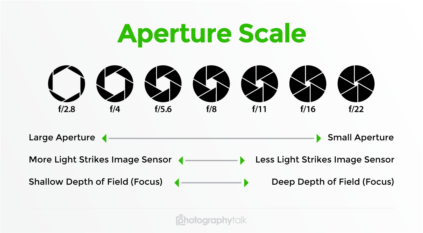 app scale 0001 image