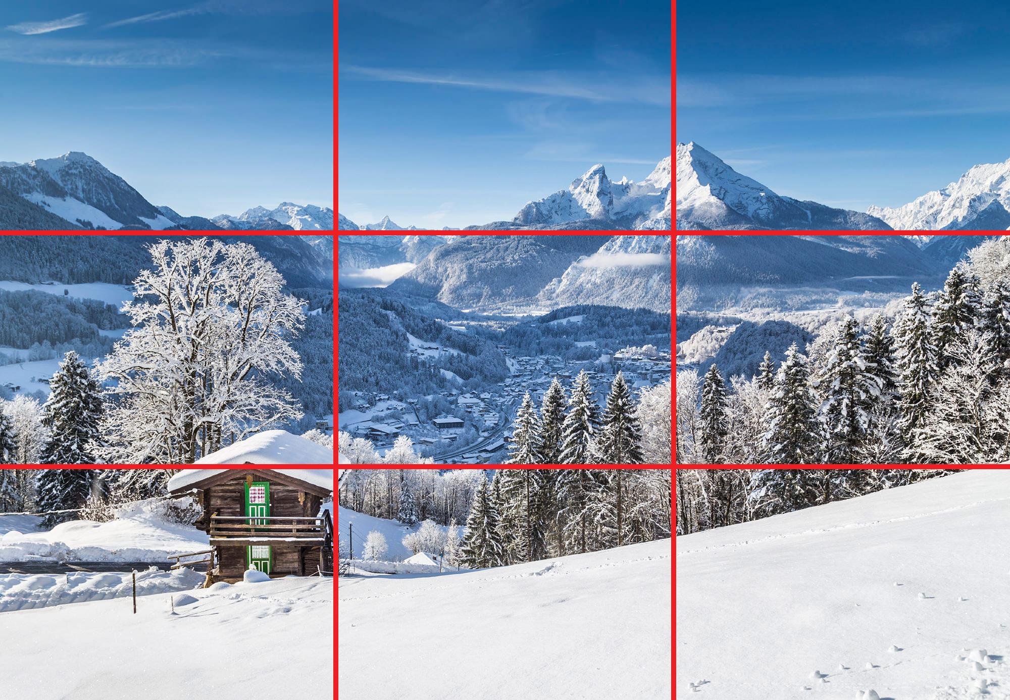 iStock 000076628991 Large2 image