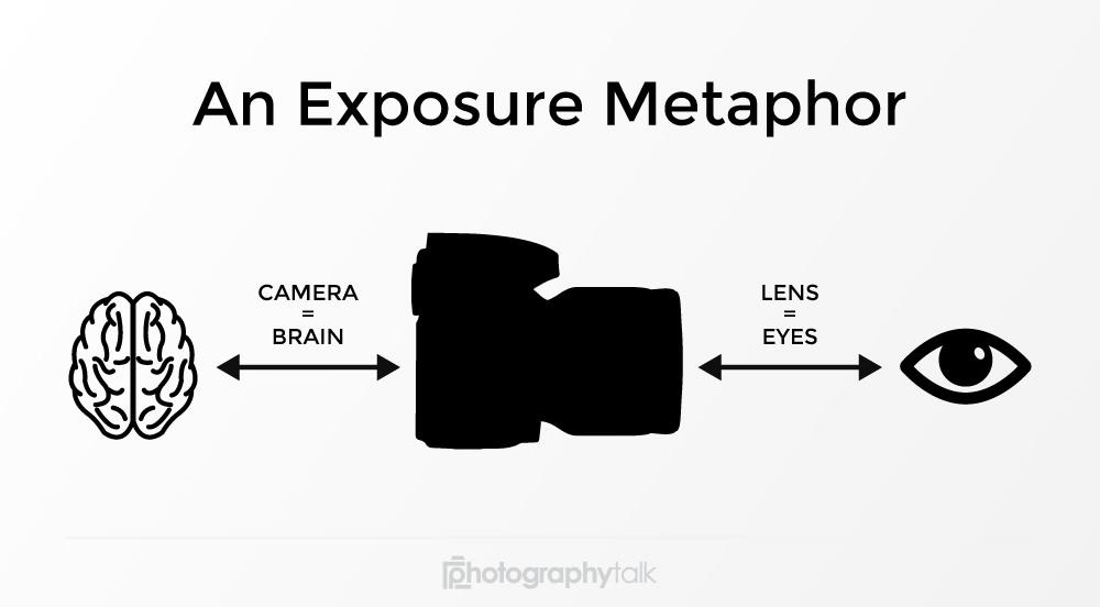 metaphor image  image
