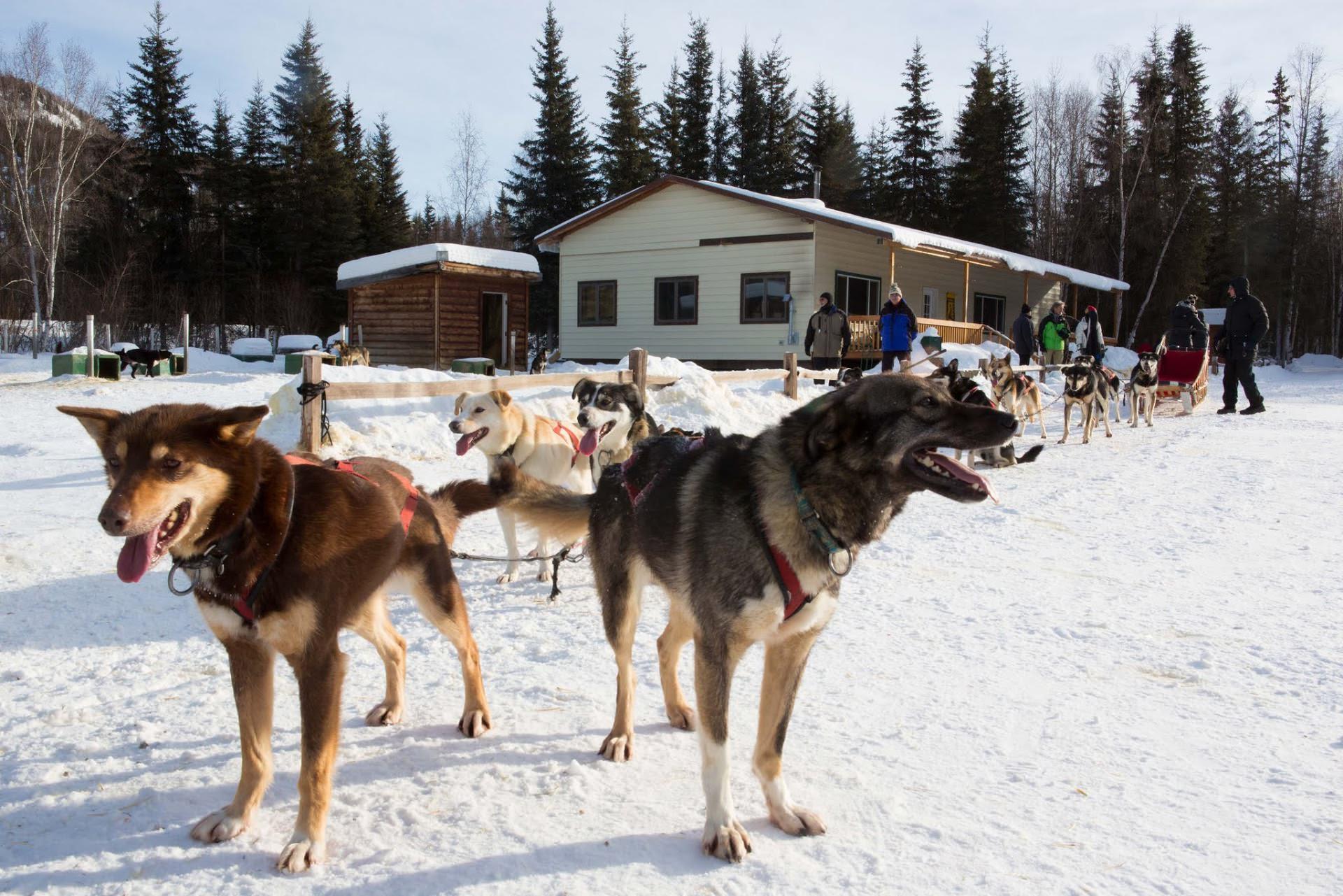 Alaska 8 image