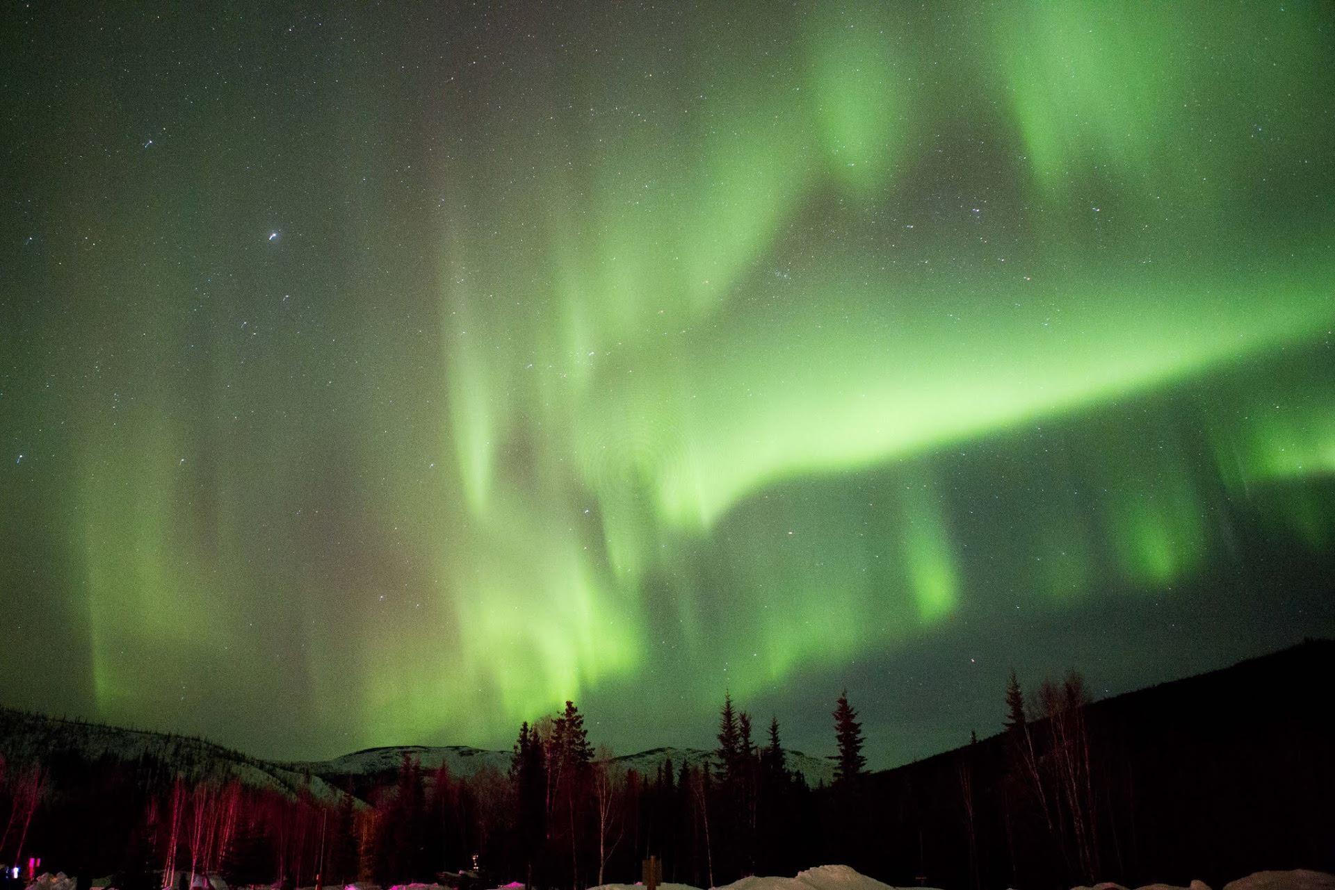 Alaska NL 3 image