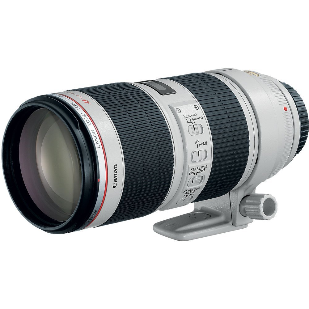canon70 200mmf28 image