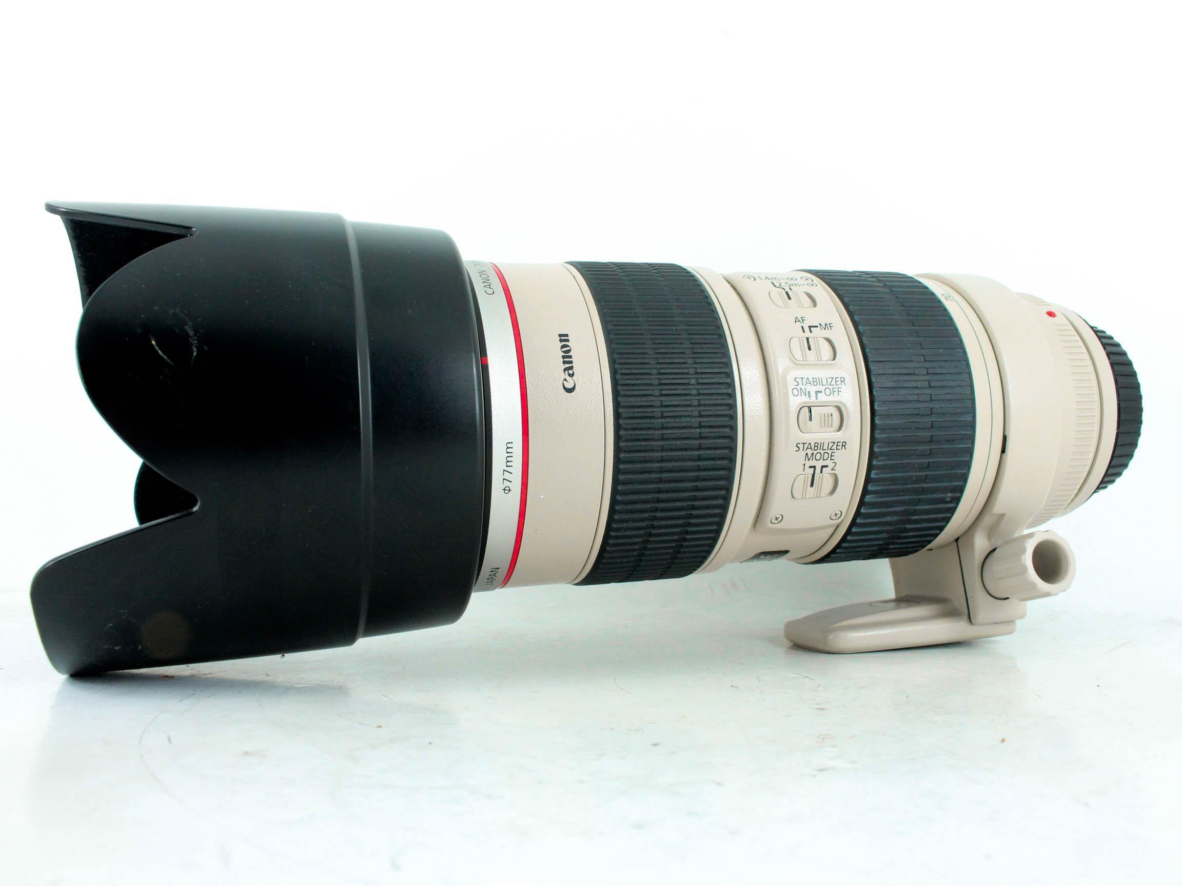 canon70 200f2.8 image