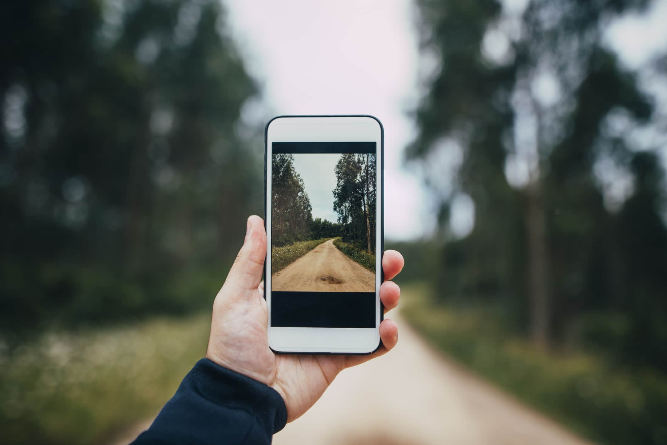 7 Smartphone Photography Tips for Shooting Like a Pro