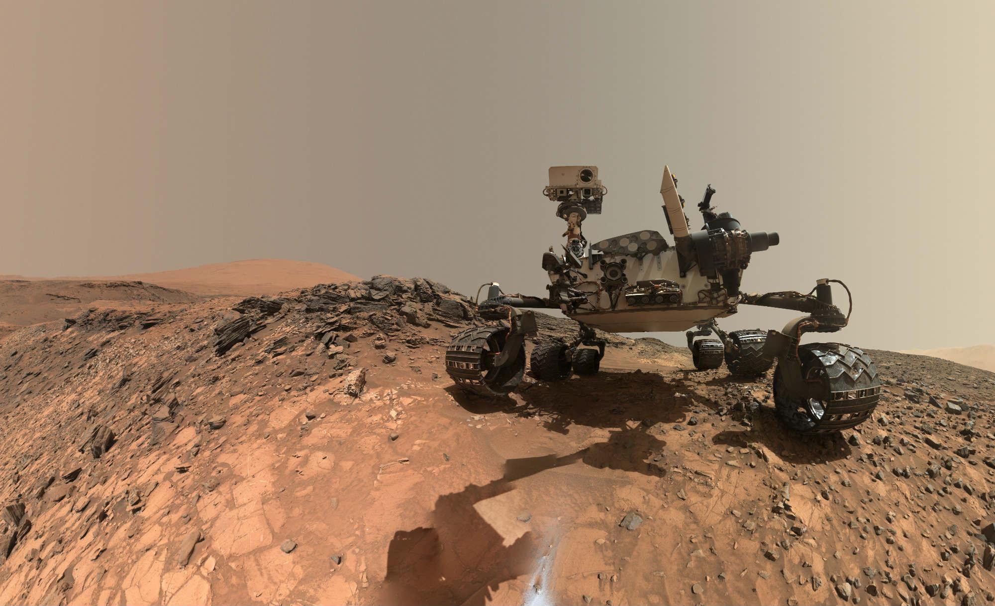 curiosity selfie 2 image