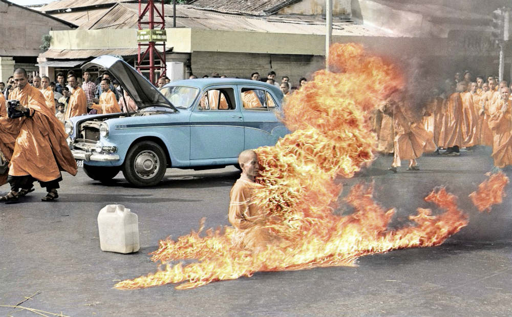 burningmonkcolor image