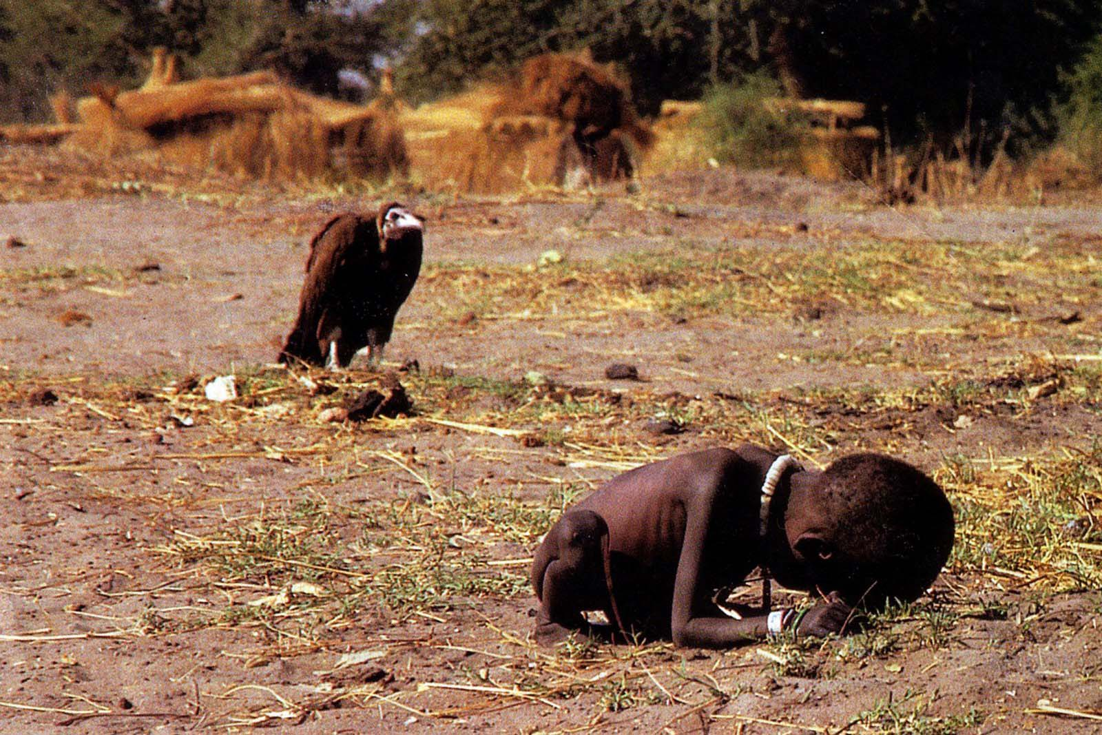 vultureandlittlegirl image