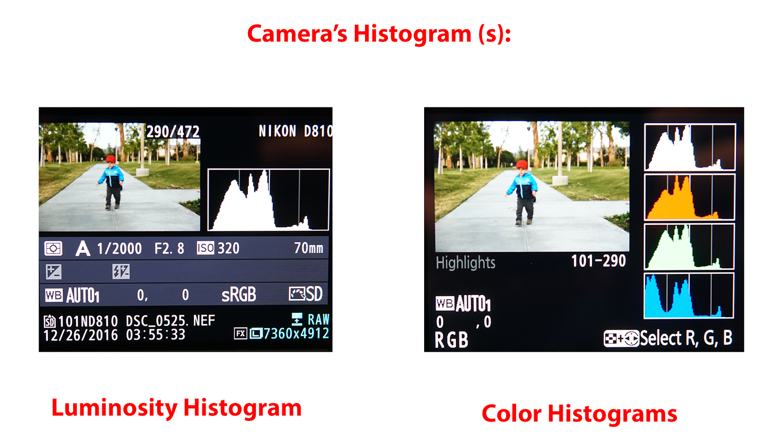 Demystified How To Read A Histogram 02 image