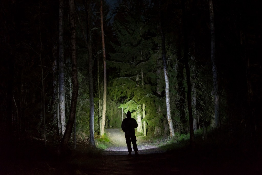 man standing in dark forest at night with flashlight and hoodie on picture id911469034 image