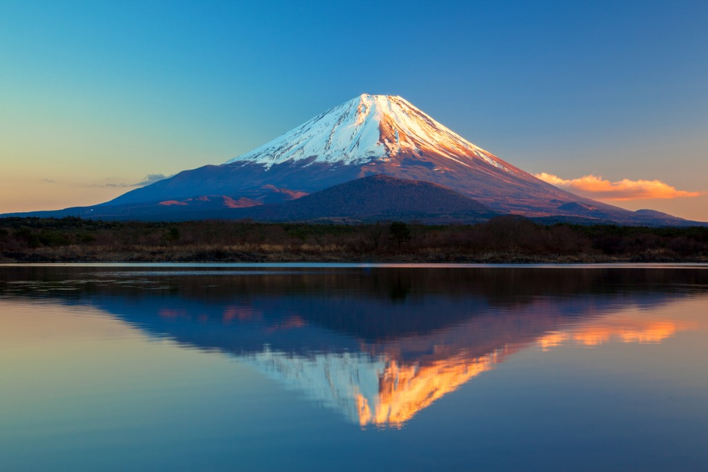 world heritage mount fuji and lake shoji picture id502617555 image
