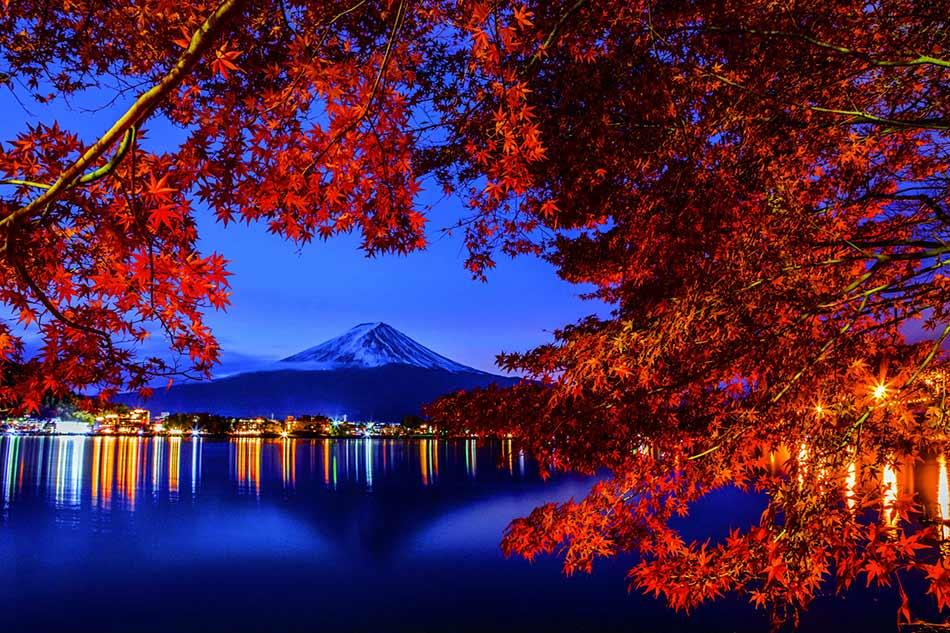 Natural Night image