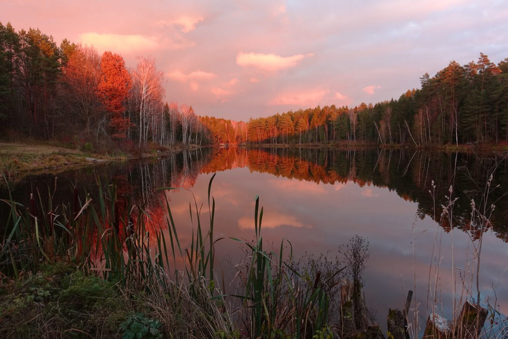 majestic sunset over beautiful forest lake picture id935754804 image