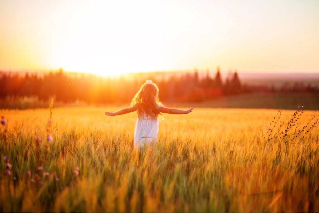 little girl in white dress in field at sunset picture id623062974 image