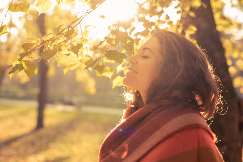 aroma of the fall picture id596768656 image