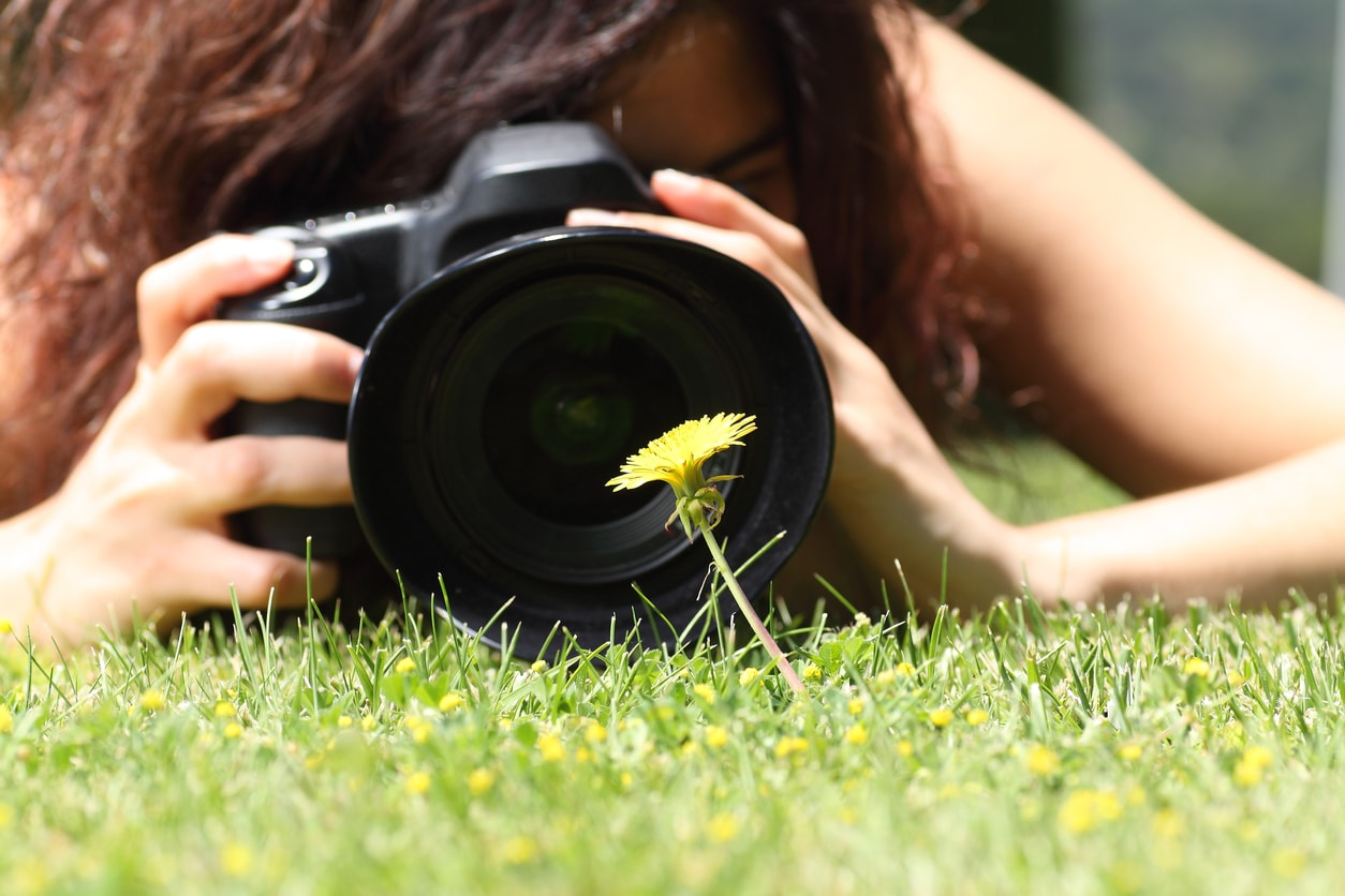 what is a macro lens image