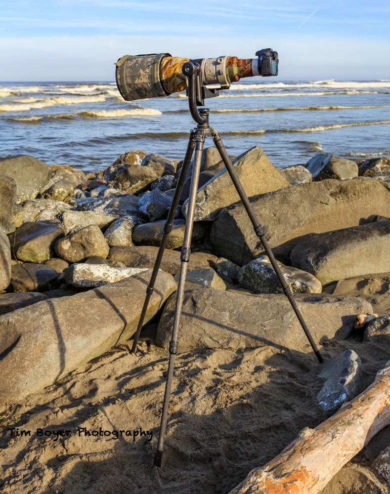 tripod with 600 mm lens and 1 image