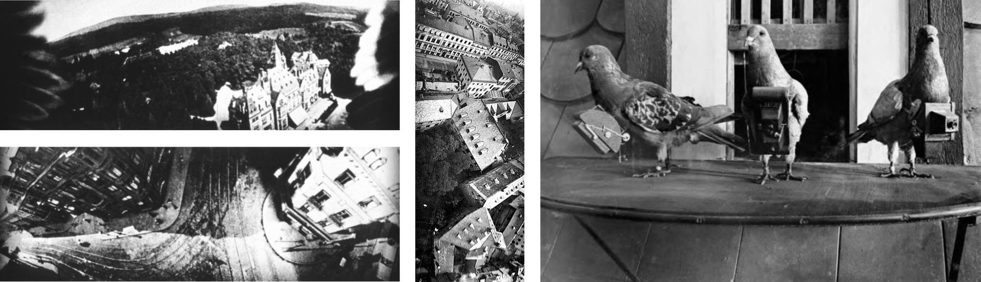 Pigeon photographers and aerial photographs image