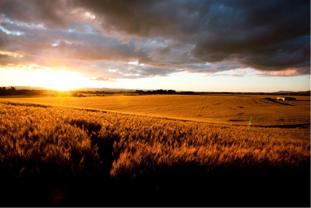 landscape photography tips image
