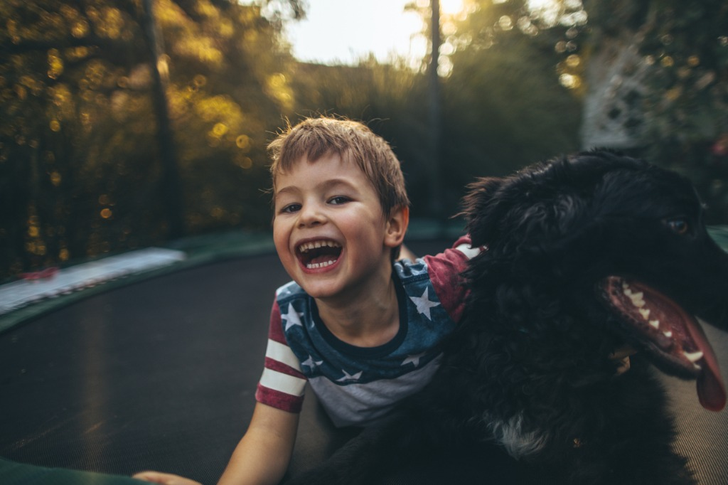 boy and his dog on a trampoline picture id864964478 image