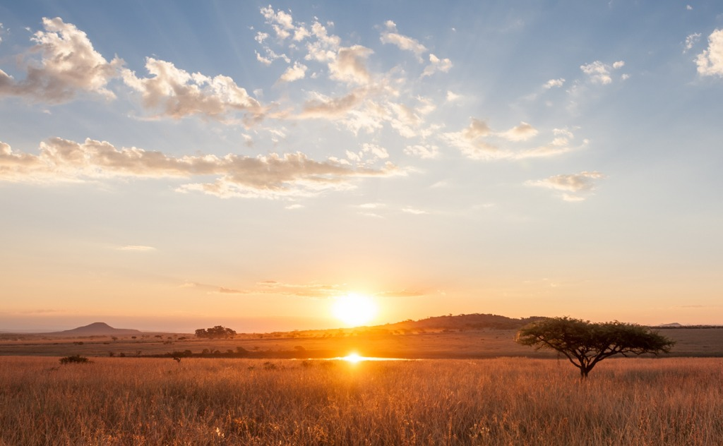 sunset over the african plains picture id683812350 image