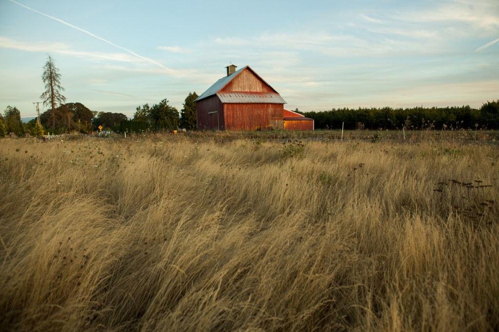 classic western american country barn picture id638087108 image