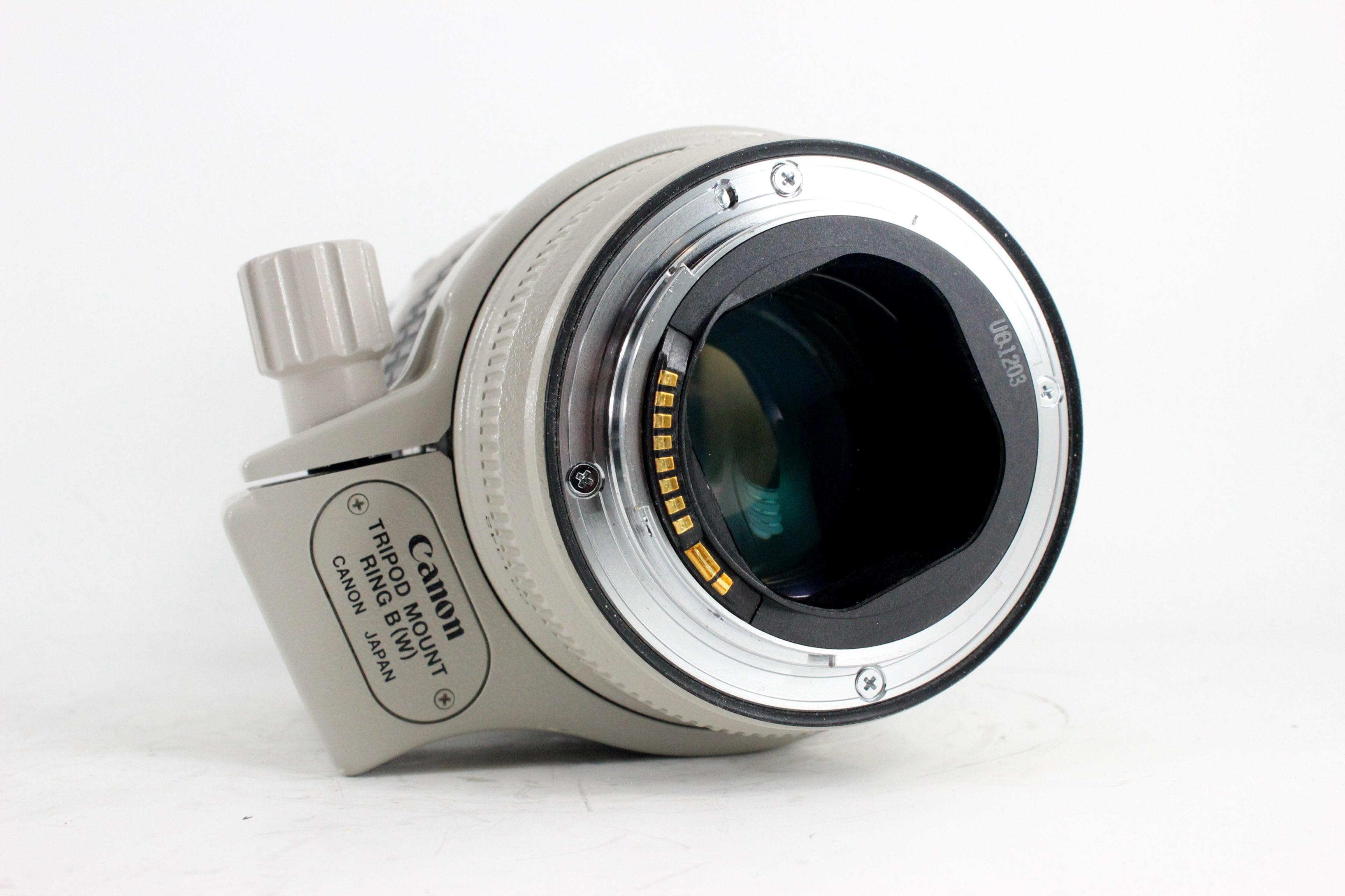 canon 70 200mm 2 image