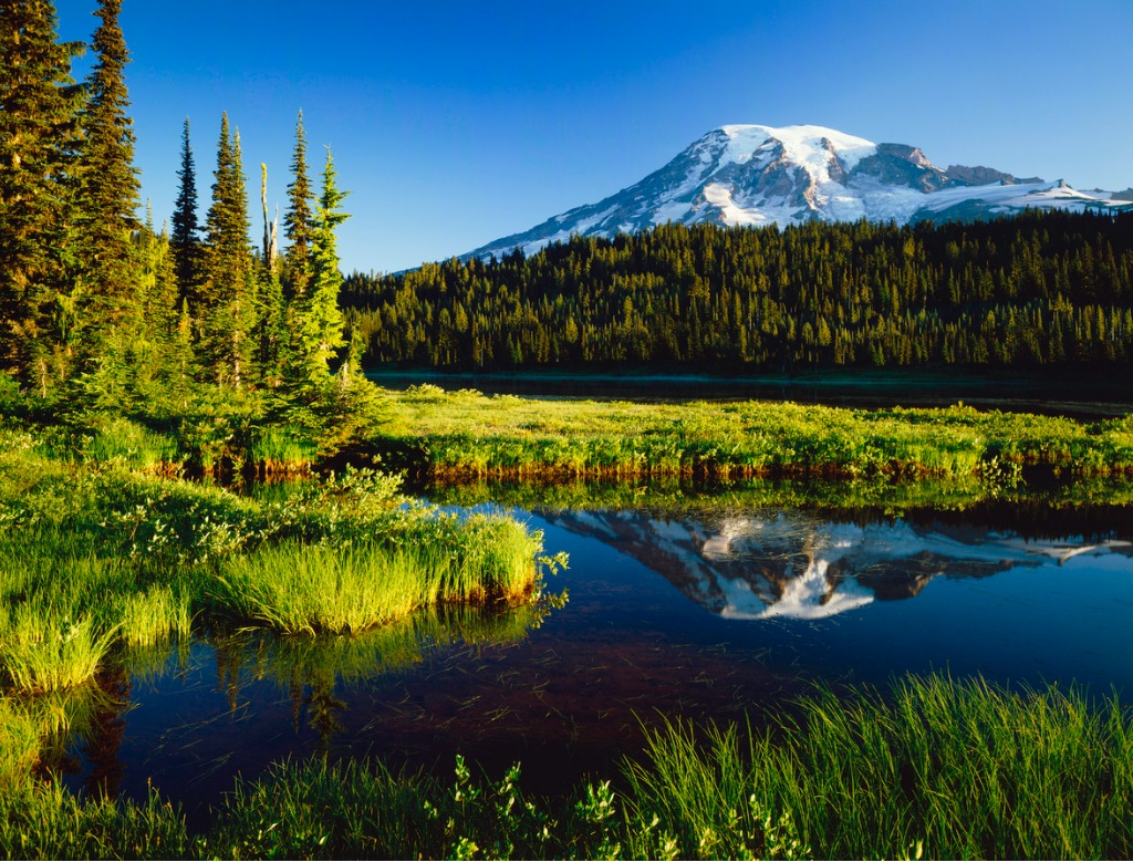 mount rainier national park picture id157684075 1 image