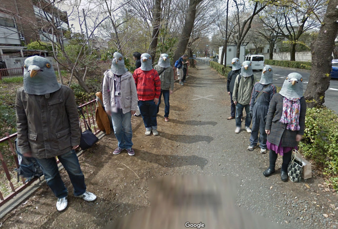 google maps pigeon people image