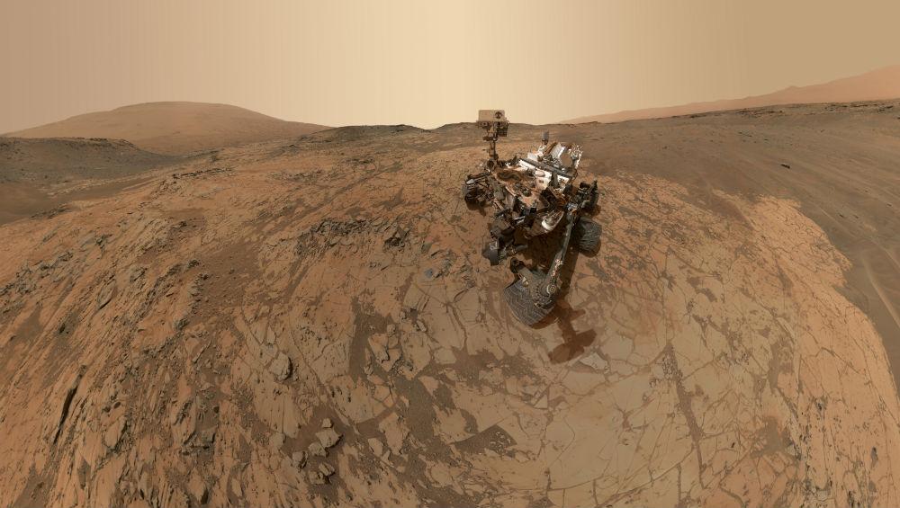 curiosity selfie image