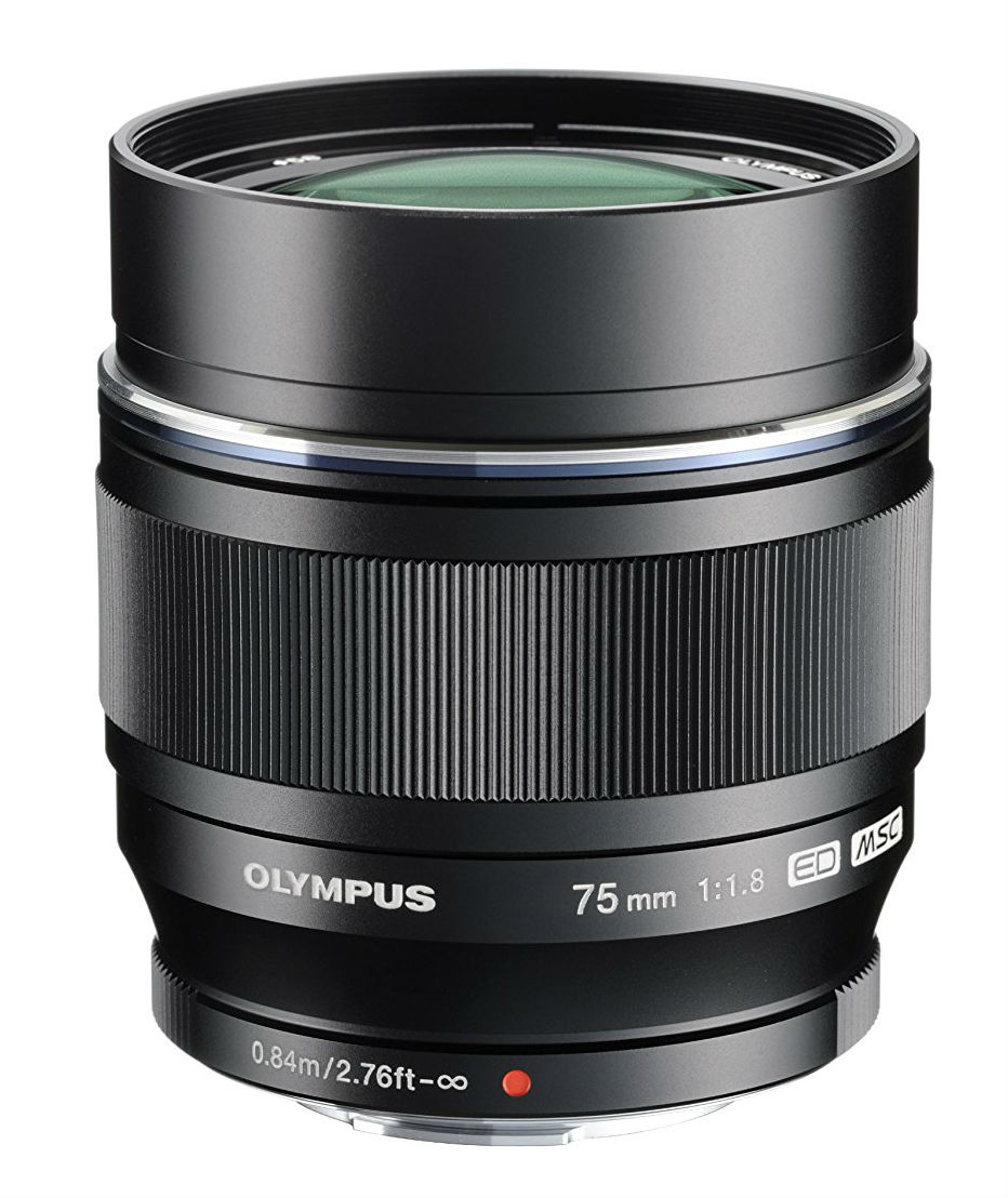 best mirrorless lens image