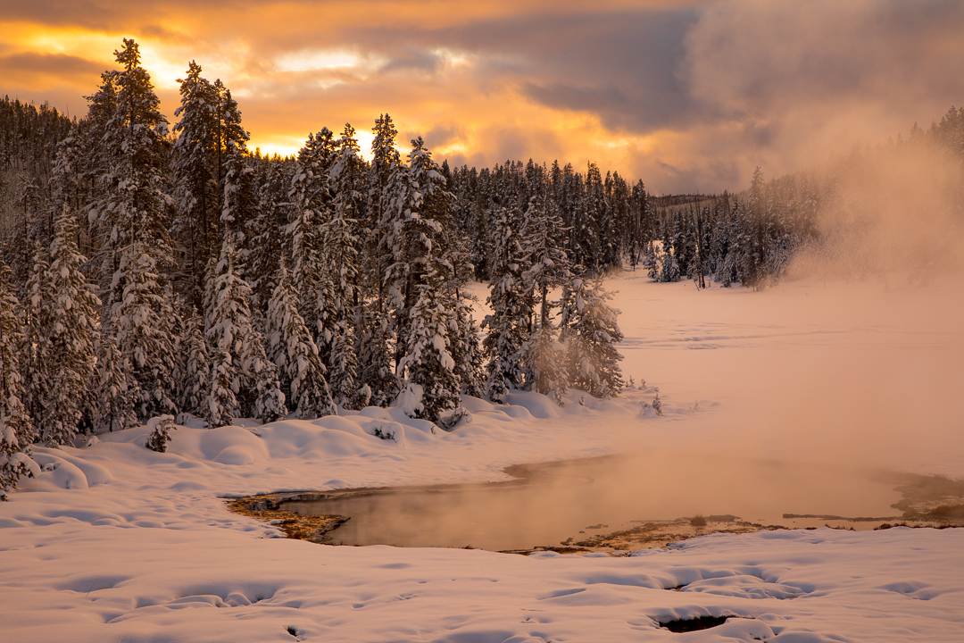 Winter Yellowstone Photo Tour Workshop 4510 image