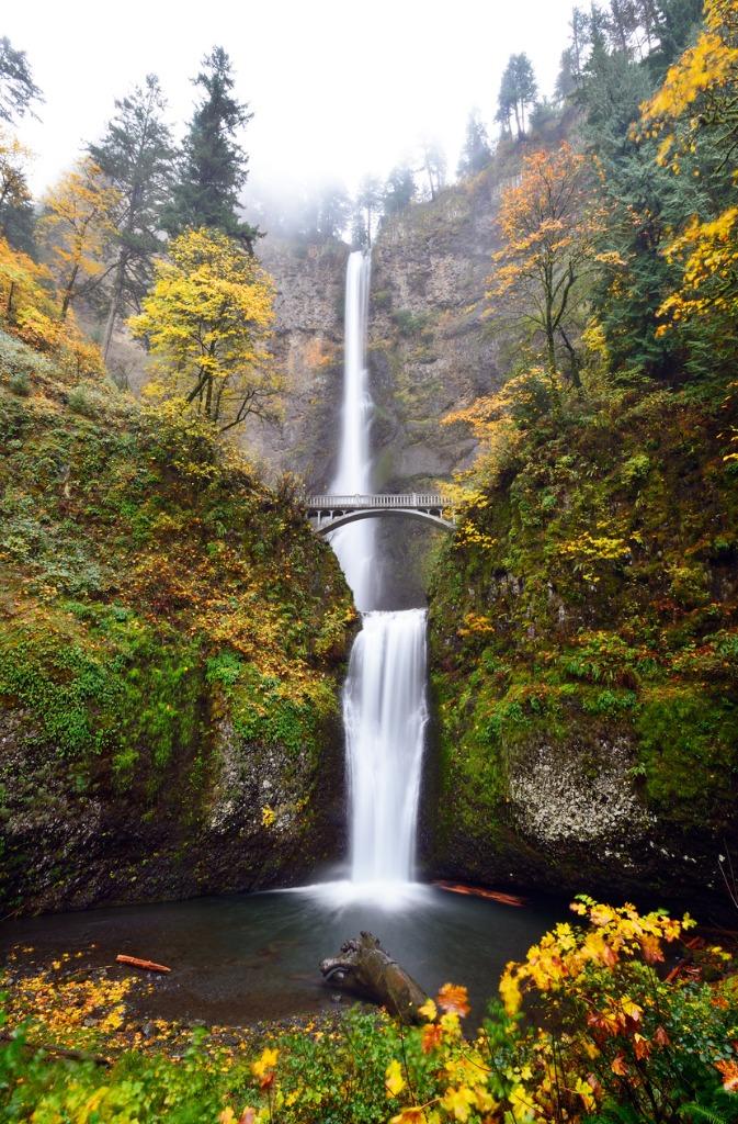 multnomah falls in autumn picture id505717166 image