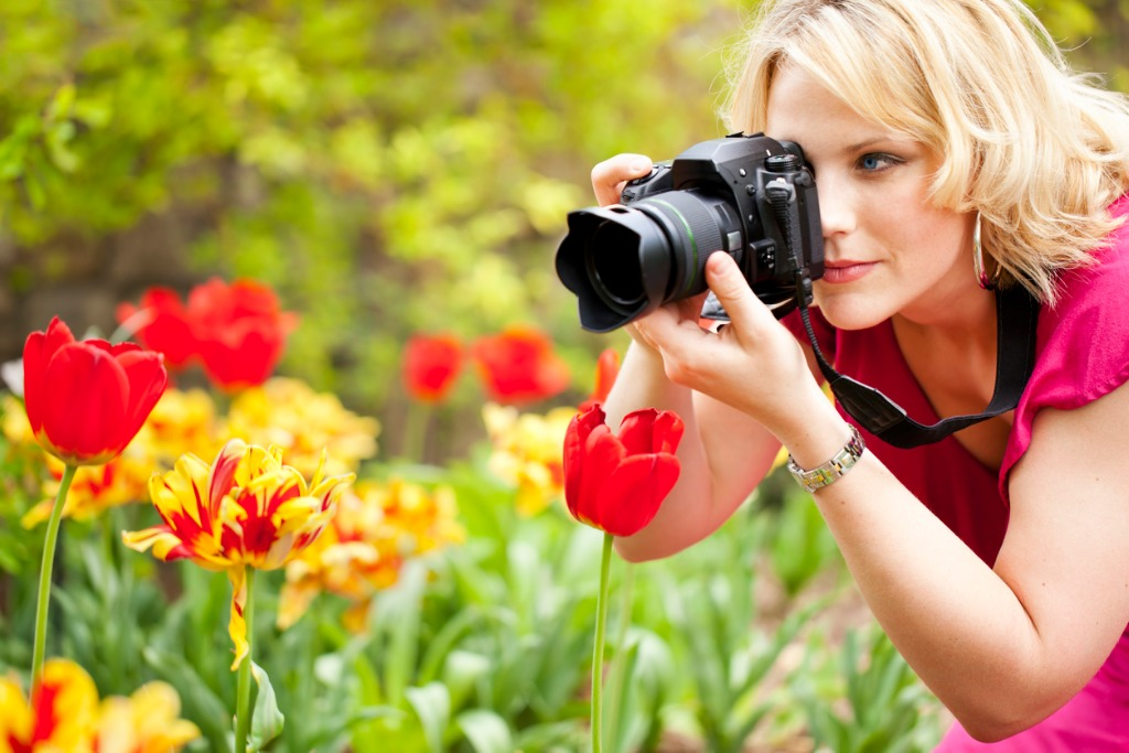 woman photographing red tulips at close range with camera picture id133918929 image